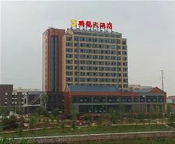 腾龙大酒店-楼顶外露灯字